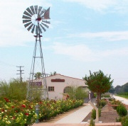 Windmill with Building and Flowers