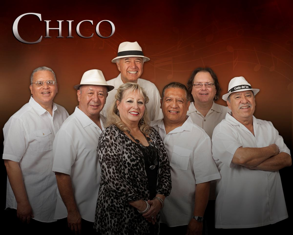Chico_White Shirts_Newest   Version