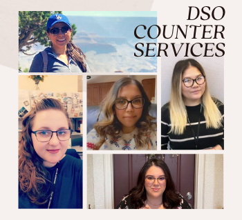 DSO Counter Services Team