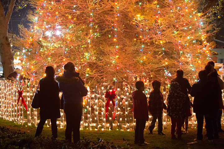 COF_Tree_Lighting_2013_e_39.jpg